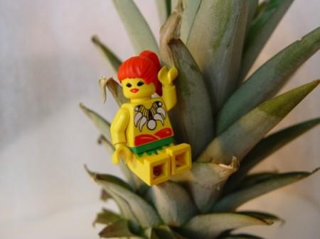 Jarča a ananas